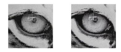 Laser dot result Standard Head vs HR head
